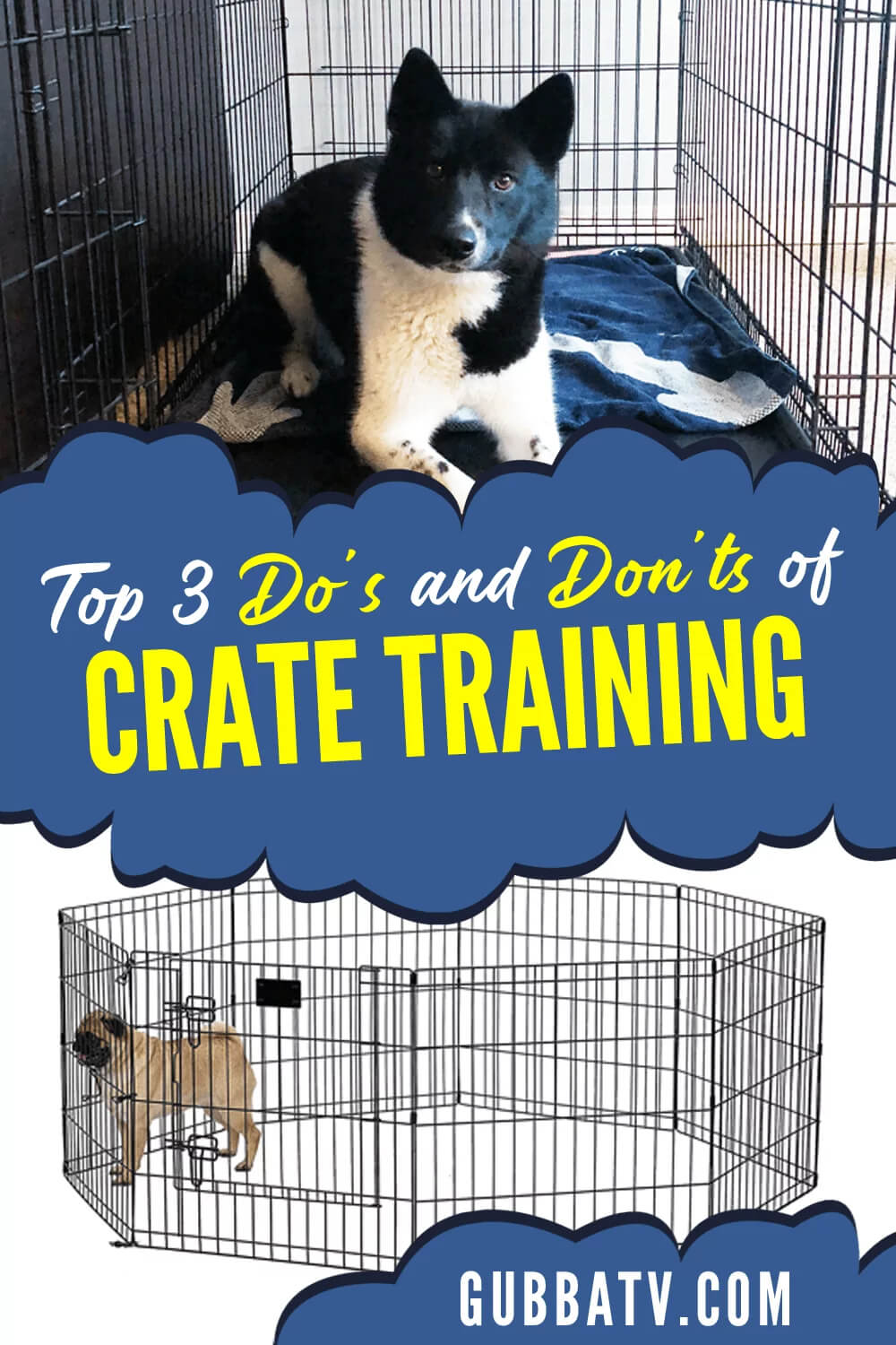 Top 3 Do's and Don'ts of Crate Training Your Puppy