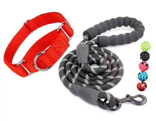 puppy rope leash and harness