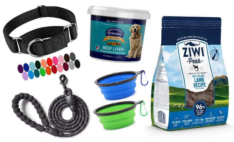 Top 3 Hiking Essentials For Your Dog