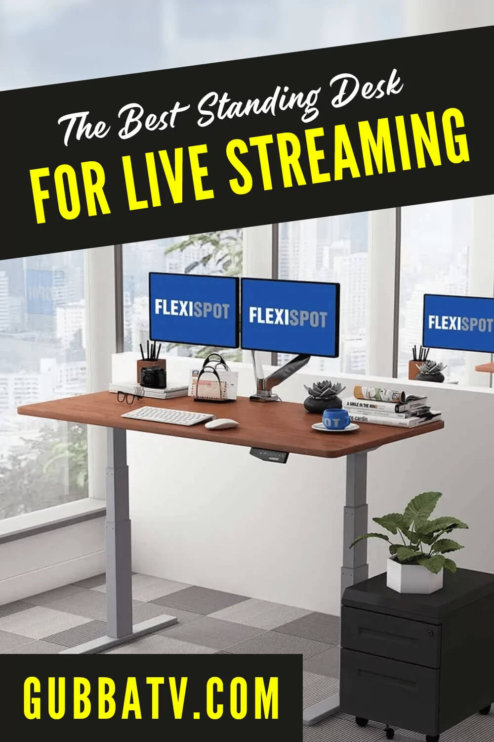 The Best Standing Desk For Home Office / Live Streaming