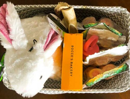 Fun Dog Gift Basket Ideas