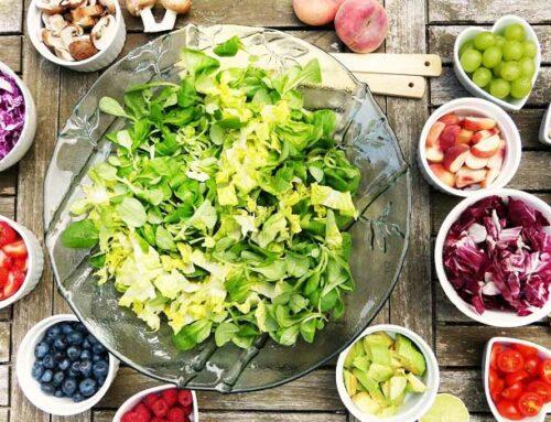 Vegetarian Homesteading
