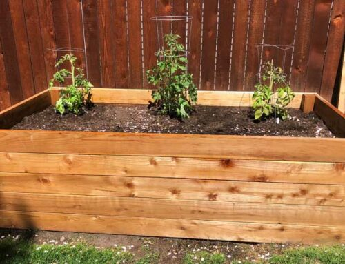 How To Fill A Raised Garden Bed